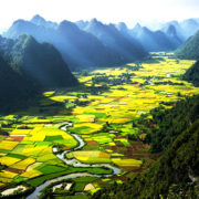 Vietnam among holiday destinations for Indians without visa hassle